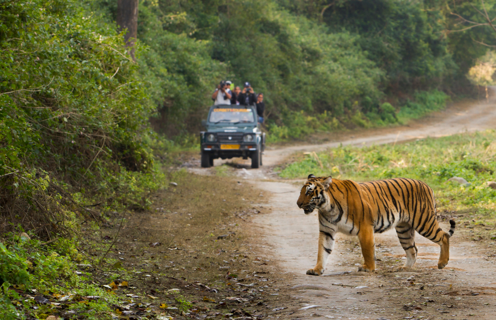 Omaxe Rewards Channel Partners of Delhi NCR with a 3-Day Retreat at Jim Corbett